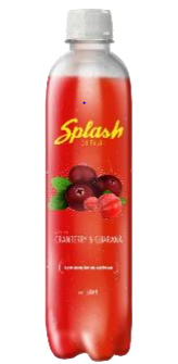 Splash of fruit-500ml